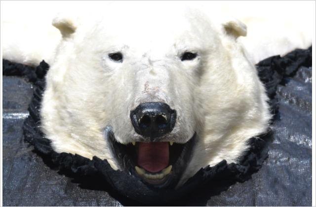 白熊敷皮(買取強化中)
